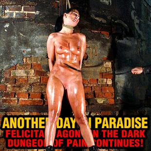 www.paingate.com