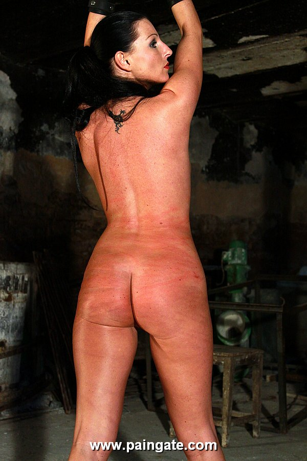 Hard whipping and caning die rohrstockzucht 9