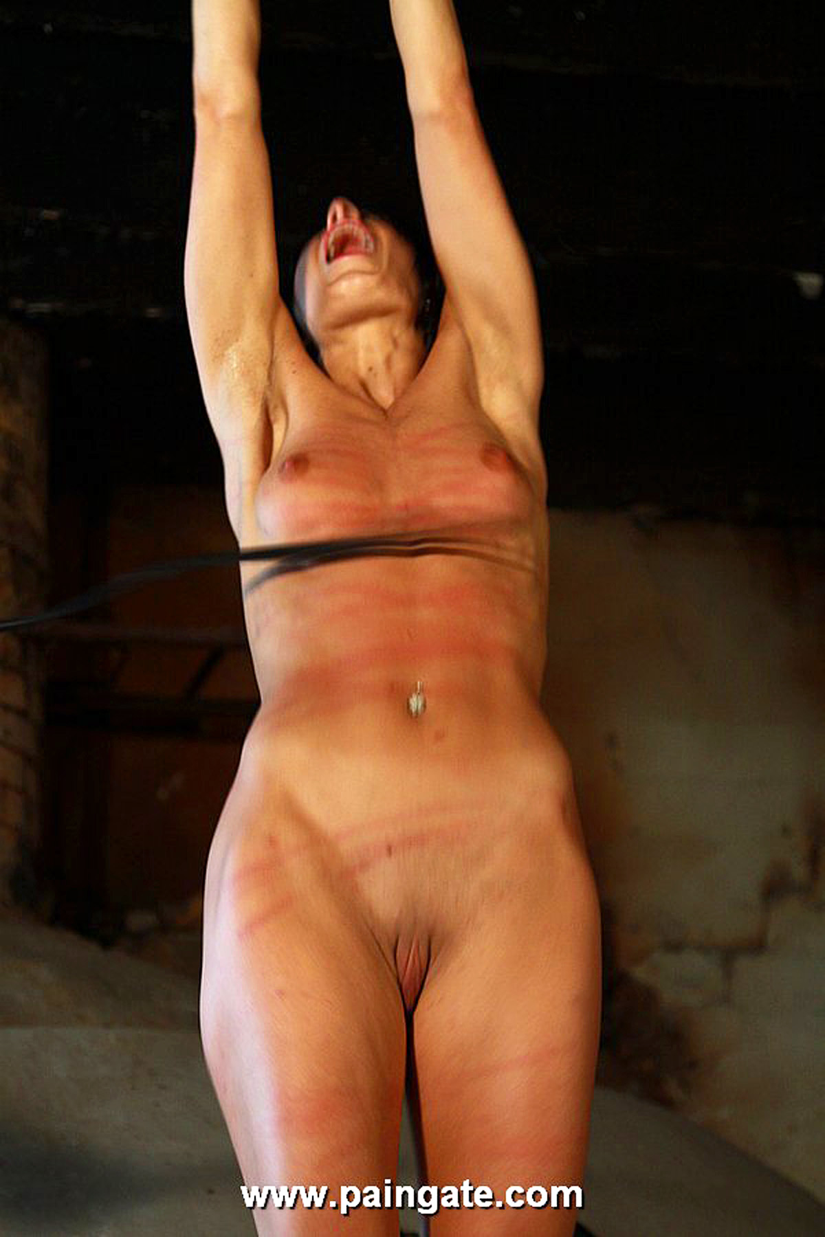 Adult dildo sex toy