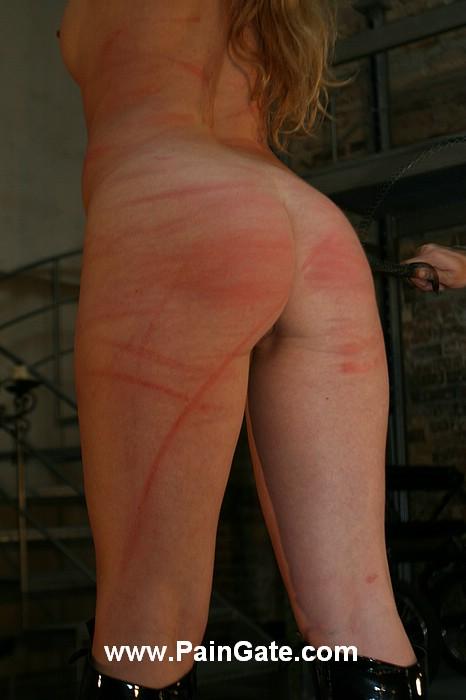 geschlechtsverkehr schwule heiße prostituierte