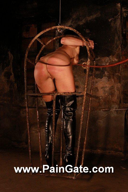 suspension bondage callboy escort